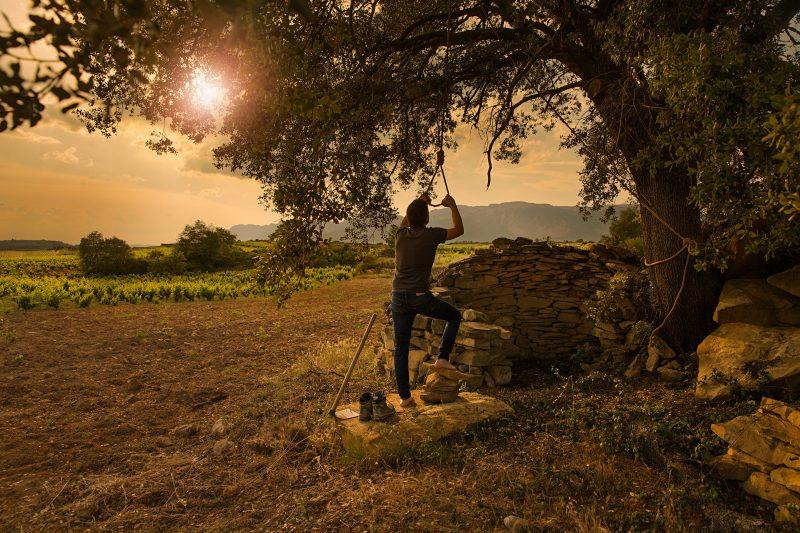 Tentenublo Rioja Vino